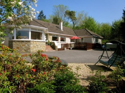 Pine Forest Bed and Breakfast Blarney