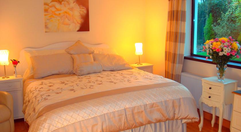 Athlumney Manor Bed and Breakfast Navan