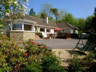 Pineforest Bed and Breakfast Blarney