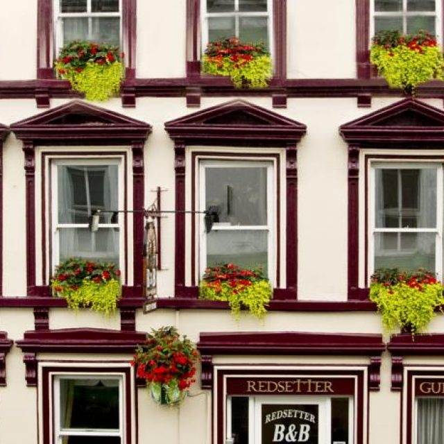 Red Setter Townhouse Bed and Breakfast Carlow