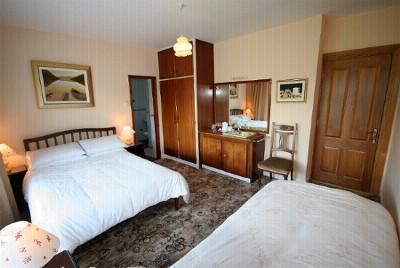 Castlemartyr Bed and Breakfast Cork Swan Lake